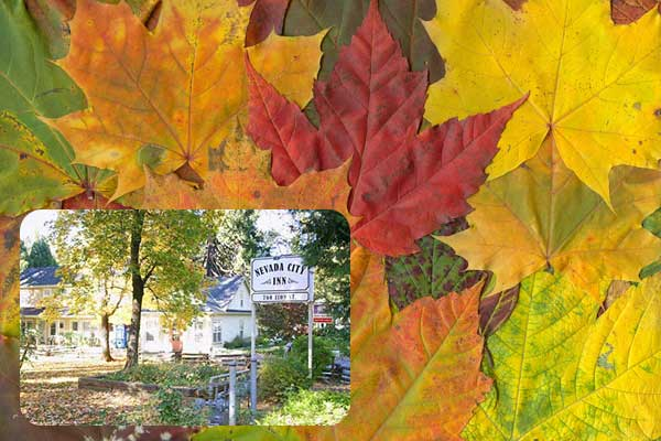 Fall Color Special Save 15 Percent - hotel in Nevada City CA
